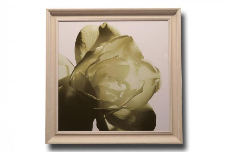 13411 Pistachio Rose 86 x 86cm