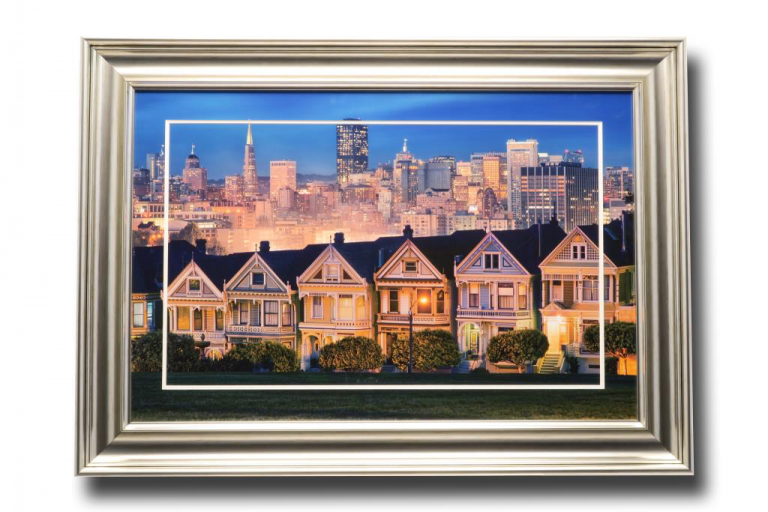 13446 Painted Ladies 105 x 75cm