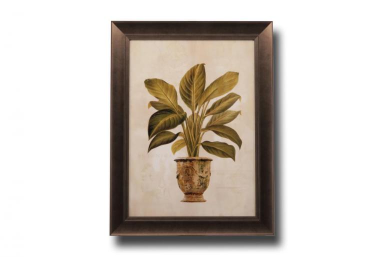 13495 Botanica Fern 66 x 86cm