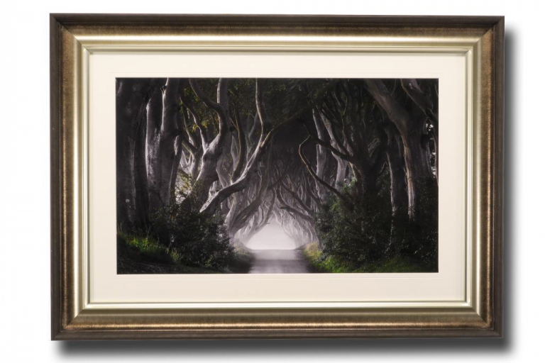 13608 Dark Hedges 106 x 76cm