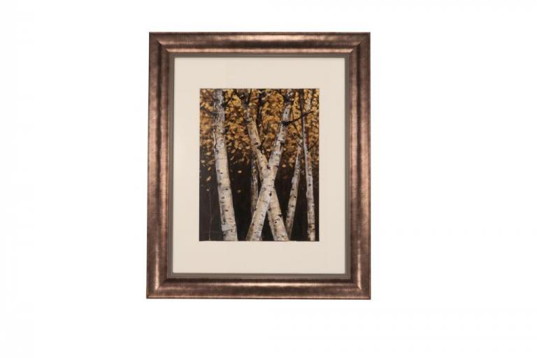 13677 Shimmering Birches I 51 x 61cm